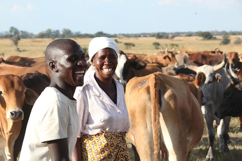 "In this photo taken Tuesday, April 23, 2013 Nerwande Chirovzvo, left, and his mother Christine stand among their cattle on land near Harare. The nation's first ""Cattle Bank"" has just opened its books in a unique kind of banking where owners are being asked to bring in their animals as a cash deposit enabling them to withdraw and borrow money against their value while retaining ownership (AP Photo/Tsvangirayi Mukwazhi)"