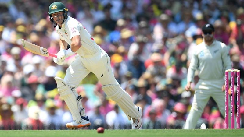 Marnus Labuschagne crafted his maiden Test double ton as Australia tormented New Zealand at the SCG