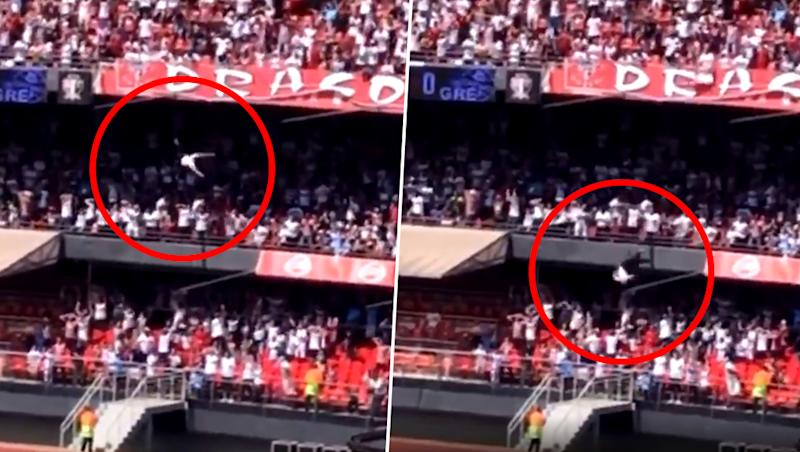 Fan Falls From Stands Onto 13-Year-Old Girl During Football Match in Brazil, Horrifying Incident Caught on Camera (Watch Video)