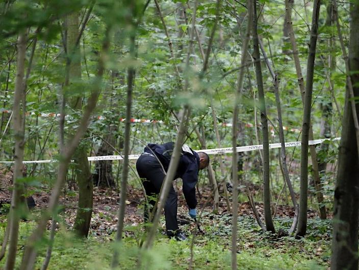 A French policeman carries out investigations at the Bois de Vincennes in Paris on June 18, 2012, after a second human torso was discovered in the woods and a leg was found by two female joggers a few days before (AFP Photo/Kenzo Tribouillard)