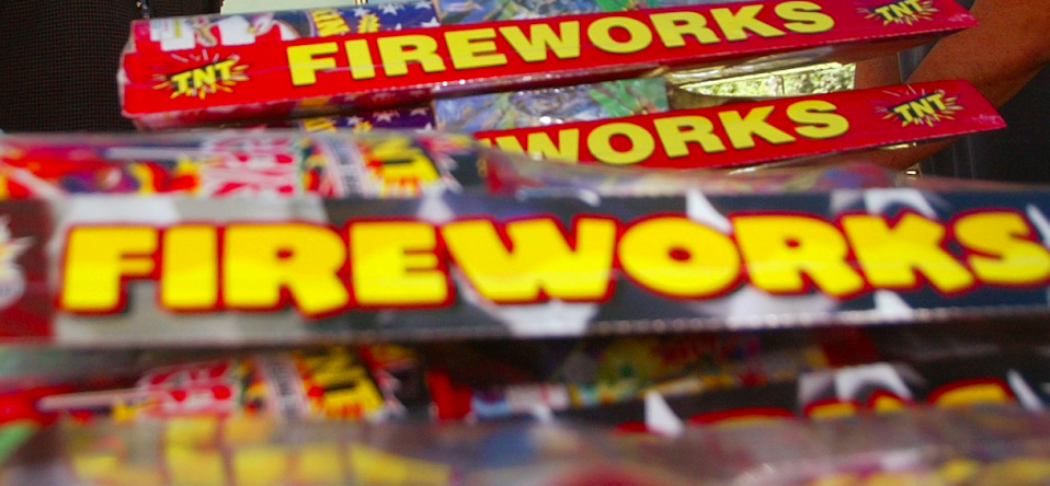 <em>A blind woman and her guide dog were attacked with fireworks, West Yorkshire Police said (Getty/stock photo)</em>