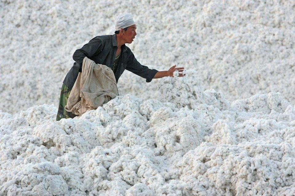 Workers stock a harvest of cotton in a cotton factory in Xinjiang province in 2006. Photo: Getty Images