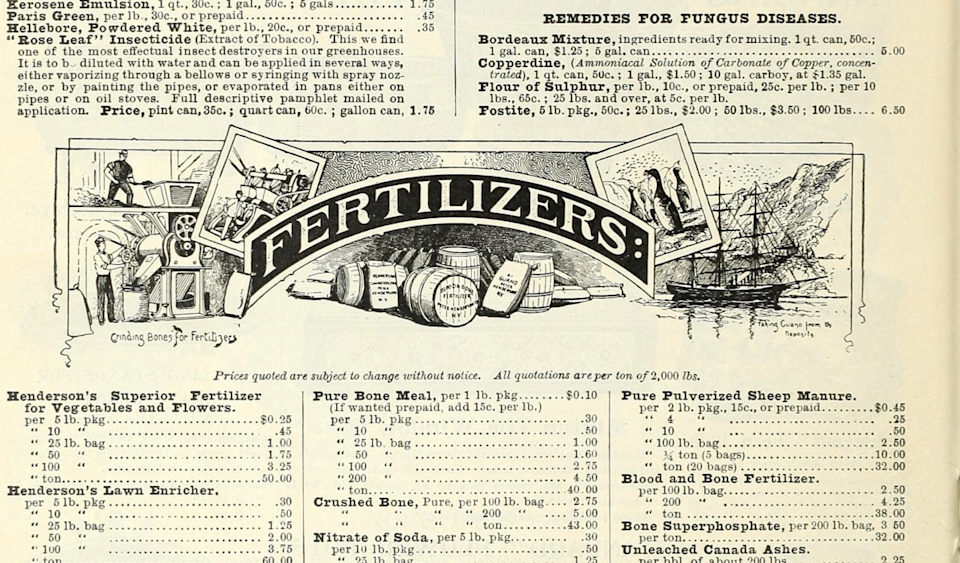 "<span class=""caption"">Imagen de la página 88 de <em>Bulbs, plants, and seeds for autumn planting: 1897</em>.</span> <span class=""attribution""><a class=""link rapid-noclick-resp"" href=""https://archive.org/stream/bulbsplantsseeds18pete_0/bulbsplantsseeds18pete_0#page/n87/mode/1up"" rel=""nofollow noopener"" target=""_blank"" data-ylk=""slk:Archive.org"">Archive.org</a></span>"
