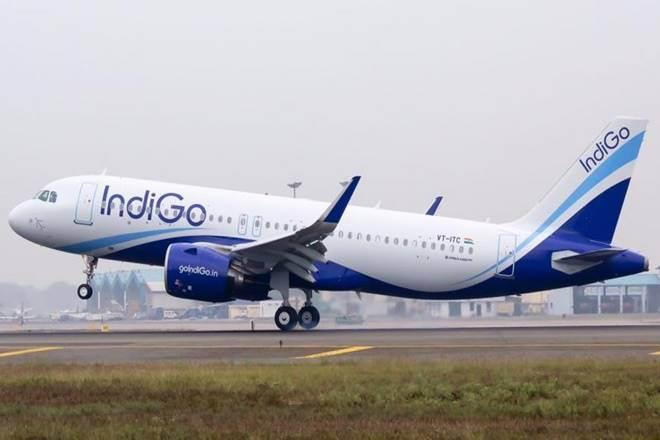 IndiGo commanded 49% market share of the domestic market at May end (File photo)