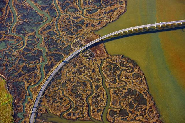 <p>One of the bridges over the marshlands in Andalusia, Spain. (Photo: Jassen Todorov/Caters News) </p>