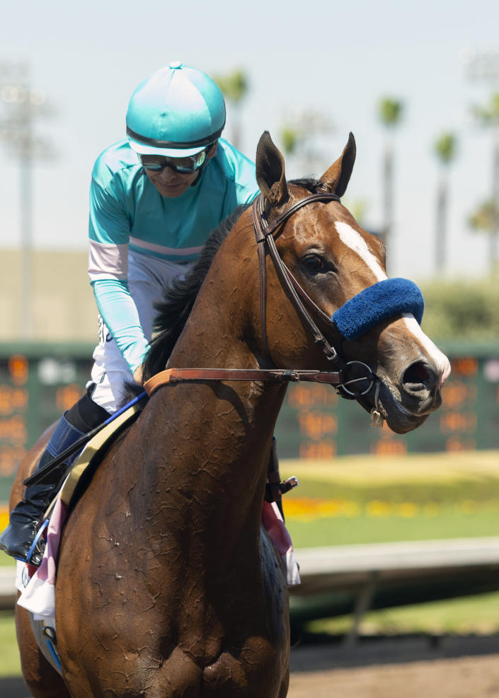 In this photo provided by Benoit Photo, Classier and jockey Mike Smith return for photos after holding off stablemate Defunded and jockey Abel Cedillo to win the Grade III $150,000 Los Alamitos Derby horse race, Sunday, July 4, 2021, at Los Alamitos Race Course, in Cypress, Calif. (Benoit Photo via AP)