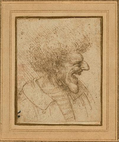 """Renaissance biographer Giorgio Vasari wrote that Leonardo da Vinci was """"so delighted when he saw curious heads, whether bearded or hairy, that he would follow anyone who had thus attracted his attention for a whole day, acquiring such a clear i"""