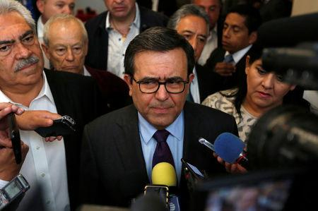 Mexico's Economy Minister Ildefonso Guajardo gestures as he answers questions to the media after a meeting with senators in Mexico City, Mexico August 29, 2017. REUTERS/Carlos Jasso