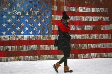 A woman walks by a U.S. flag mural on the side of a restaurant during a snow fall in the Williamsburg section of the Brooklyn borough in New York, January 21, 2014. REUTERS/Shannon Stapleton