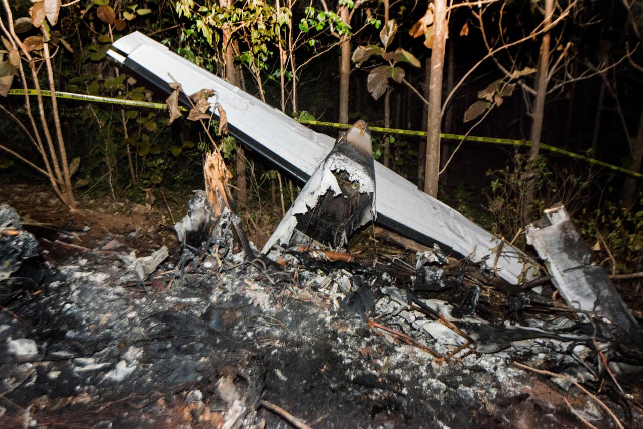 <p>The tail of the burned fuselage of a small plane that crashed, rests near trees in Guanacaste, Corozalito, Costa Rica on December 31, 2017. (Photo: Ezequiel Becerra/AFP/Getty Images) </p>