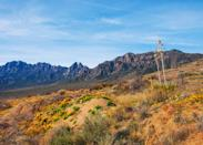 """<p><strong>Best camping in New Mexico:</strong> Aguirre Spring Campground</p> <p>High above the Chihuahuan Desert loom the imposing Organ Mountains, and Aguirre Spring is set right at their feet. (It also promises its own view of Tularosa Basin and <a href=""""https://www.cntraveler.com/story/new-mexico-white-sands-national-park?mbid=synd_yahoo_rss"""" rel=""""nofollow noopener"""" target=""""_blank"""" data-ylk=""""slk:White Sands National Park"""" class=""""link rapid-noclick-resp"""">White Sands National Park</a>, below.) This affordable campground is managed by the Bureau of Land Management, and is surrounded by mountain mahogany and alligator juniper, providing much needed shade in the arid landscape.</p>"""