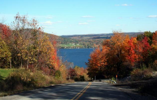 Visit the Finger Lake in Autumn to see the leaves change colour.