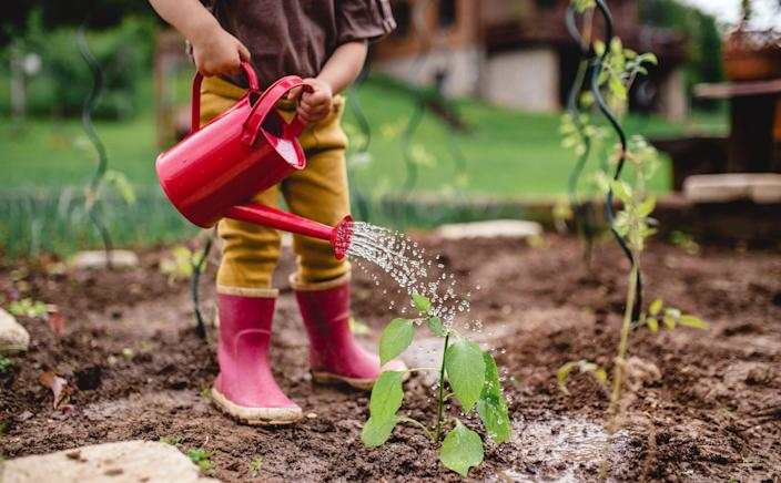 A midsection of portrait of cute small child outdoors gardening.