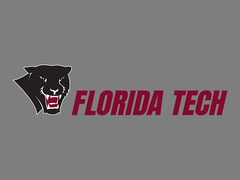 Florida Institute of Technology Panthers logo, graphic element on gray