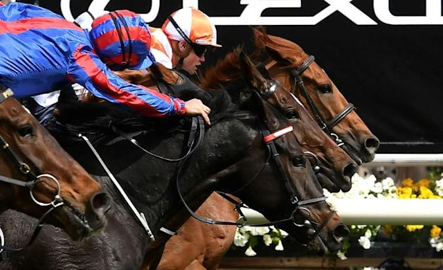 Photo-finish: Jockey Craig Williams on board Vow and Declare just gets up to cross the line first in the Melbourne Cup from Prince of Arran (nearest camera), with Master of Reality between horses (AFP Photo/WILLIAM WEST)