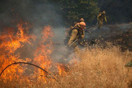 """Members of the CAL Fire Vina Helitack crew battle a spot fire as the fast-moving wildfire called """"Sand Fire"""" burns near Plymouth, California July 26, 2014. REUTERS/Max Whittaker"""