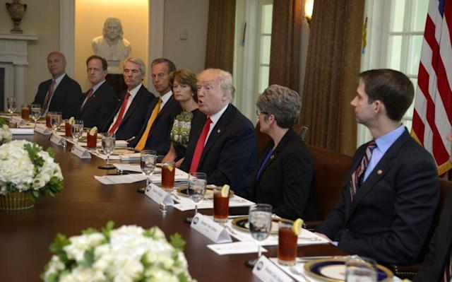 President Trump hosts a working lunch with members of Congress to discuss reforming Obamacare. (Photo: Mike Theiler/Getty Images