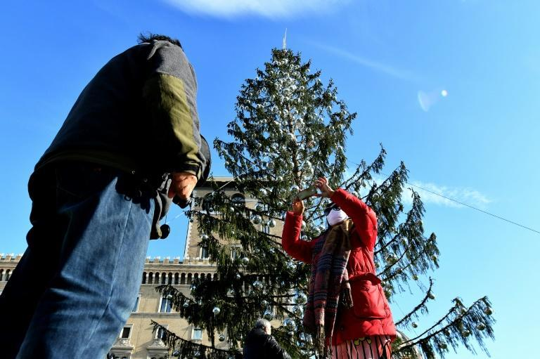 The Norway spruce -- which was estimated to have cost Rome 48,000 euros ($57,000) -- was declared dead on its arrival in the city in December, with many saying it was a metaphor for the state of the Italian capital