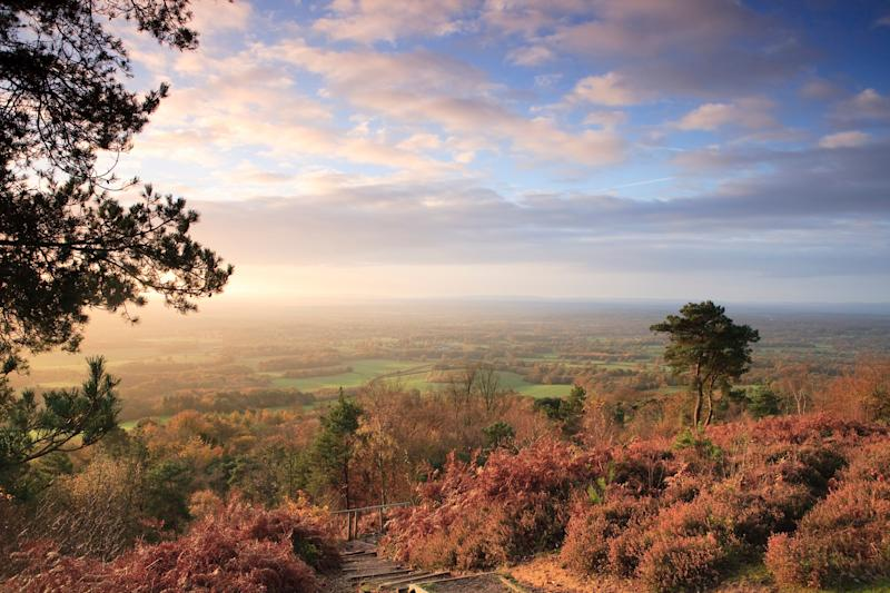 Views from Leith Hill - getty