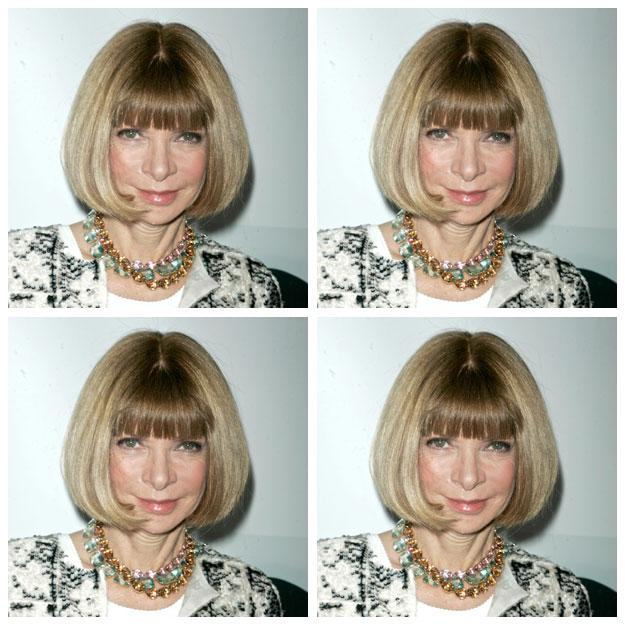 GENIUS: Anna Wintour Requests Mario Testino To Shoot Her Passport Photo