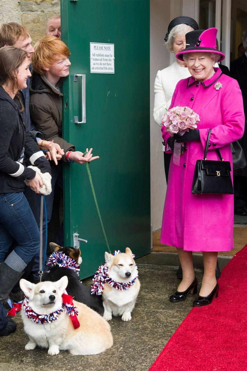 <p>In a bright pink coat with black accents, matching hat, and black shoes for a visit to Sherborne, England, Queen Elizabeth II looked extremely pleased to see the adorable corgis. </p>