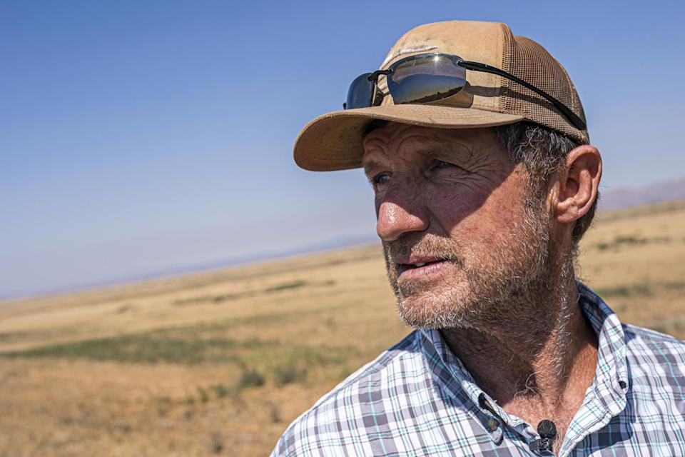 Phil Fine watches a combine harvest carrot seeds in the North Unit Irrigation District on Tuesday, Aug. 31, 2021, near Madras, Ore. Oregon farmers who grow 60% of the world's carrot seed have been without irrigation water for weeks as drought ravages the American West. But just down the road, sprinklers douse crops and cattle graze in green pastures. The stark contrast is a consequence of the West's arcane water law, and it's brought new urgency to efforts to share the resource along Oregon's Deschutes River. (AP Photo/Nathan Howard)