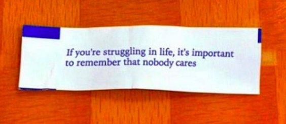 fortune cookie: If you're struggling in life, it's important to remember that nobody cares