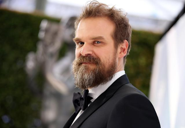 David Harbour attends the 26th Annual Screen ActorsGuild Awards in January 2020 in Los Angeles (Rich Fury/Getty Images)