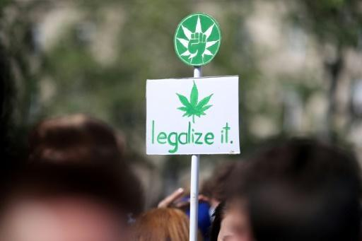 France to scrap prison terms for cannabis users