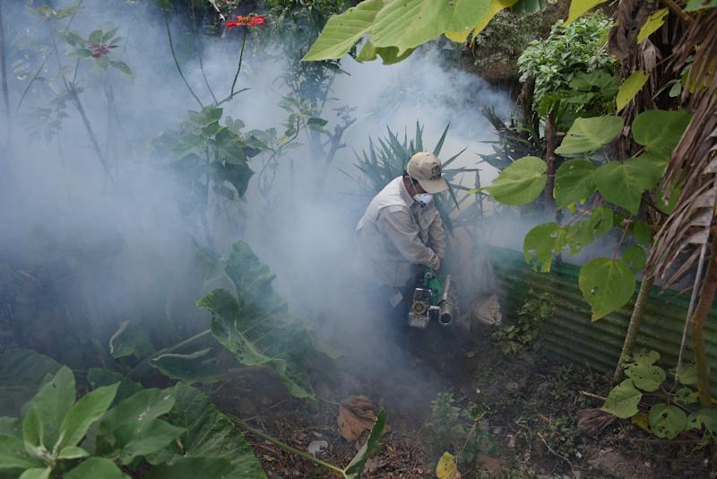 Health Ministry employees fumigate against the Aedes aegypti mosquito, vector of the dengue, Zika and Chikungunya viruses in Guatemala City (AFP Photo/JOHAN ORDONEZ)