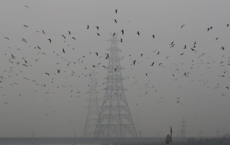 FILE PHOTO: Birds fly next to electricity pylons on a smoggy afternoon in the old quarters of Delhi