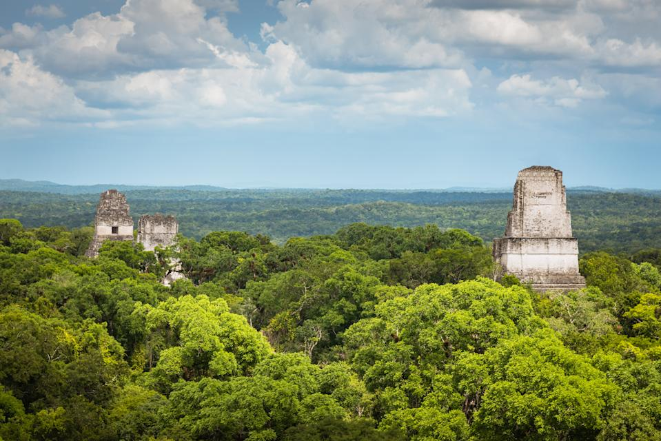 Aerial view over the green Rainforest of Tikal Guatemala Temple Complex Rainforest. Jaguar Pyramid Tikal Temple I Mayan Pyramid and Temple II Tops peaking over the green rainforest trees. Tikal National Park, Unesco World Heritage Site. Tikal, Guatemala, Central America.