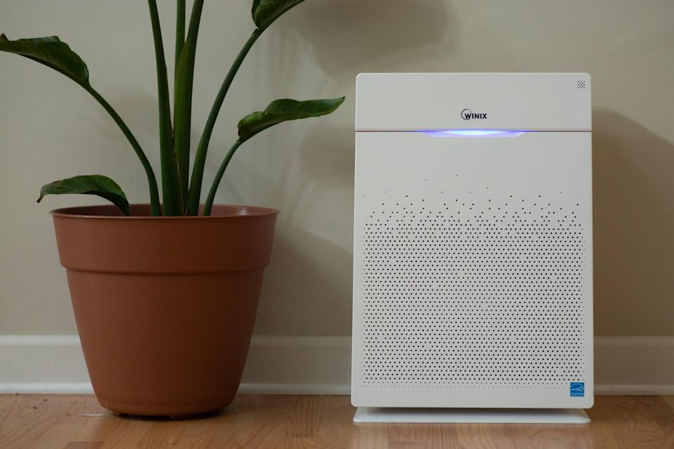 <p>If you have more than one pet and a large space, consider the <span>Winix Ultimate Pet Air Purifier with True HEPA Filter</span> ($217). The larger model can cover up to 300 square feet of space. It's also made with a pre-filter, which catches larger particles like pet hair.</p>