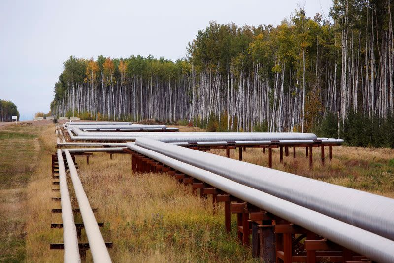 FILE PHOTO: Pipelines run at the McKay River Suncor oil sands in-situ operations near Fort McMurray.