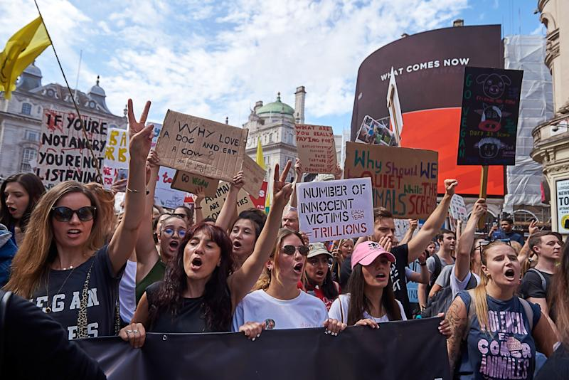 Animal rights protester march from Anchillies corner in Hyde Park to Trafalgar Square in London on Saturday Aug 17th, 2019 (Photo by Karyn Louise/NurPhoto via Getty Images)