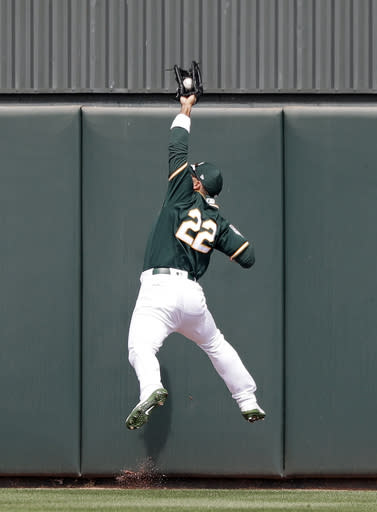 Oakland Athletics center fielder Ramon Laureano leaps at the wall to snag a deep fly ball from Chicago Cubs' Anthony Rizzo to end the top of the first inning of a spring training baseball game Wednesday, March 13, 2019, in Mesa, Ariz. (AP Photo/Elaine Thompson)