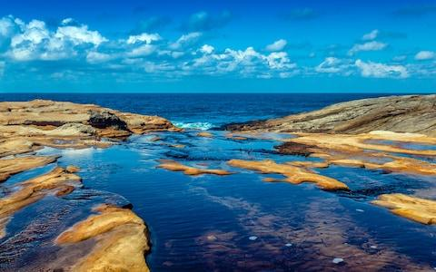 There are over 15,000 hectares of rainforest gullies, bushwalking trails, secret beaches, dramatic cliff tops and rock pools in The Royal National Park - Credit: © Peter Pesta/Peter Pesta Photography