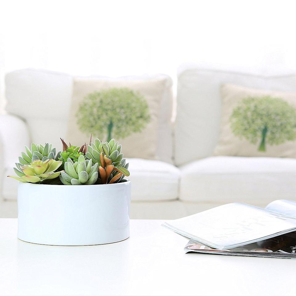 <p>This <span>Faux Potted Succulents in Glazed White Ceramic Flower Pot</span> ($28) looks super realistic and will add some green to your apartment.</p>