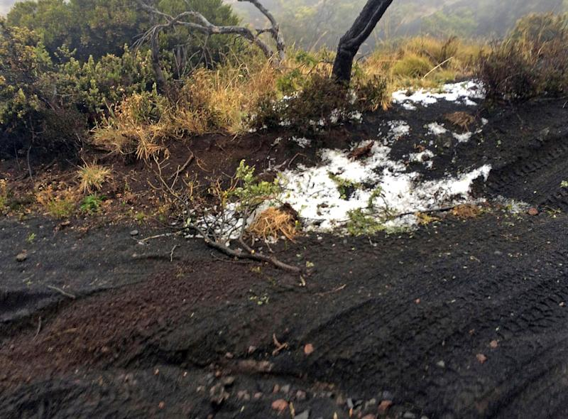 Black volcanic cinders are covered with a dusting of snow at the Polipoli State Recreation area on the slopes of Haleakala near Kula on the Hawaii island of Maui, on Feb. 11, 2019.