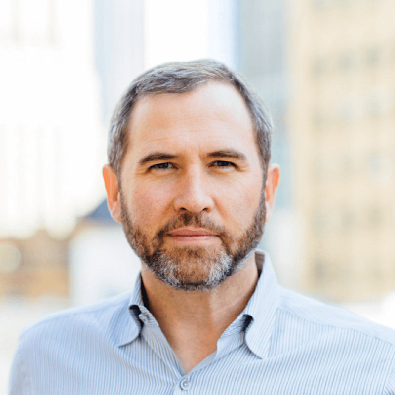 Ripple CEO says project's transparency has left them open for attack