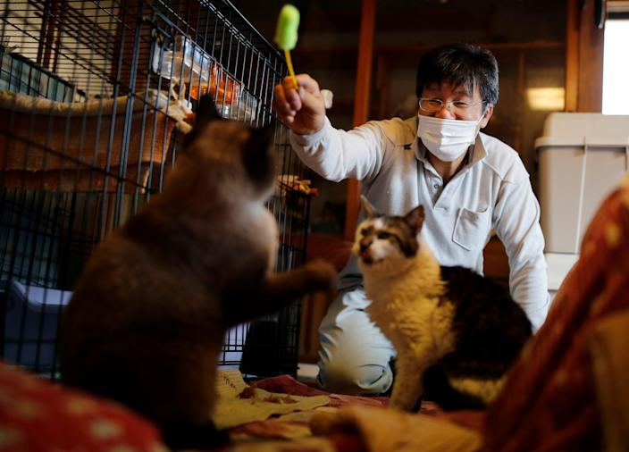 <p>Sakae Kato plays with cats that he rescued, called Mokkun and Charm, who are both infected with feline leukemia virus, at his home, in a restricted zone in Namie, Fukushima Prefecture, Japan</p> (REUTERS)