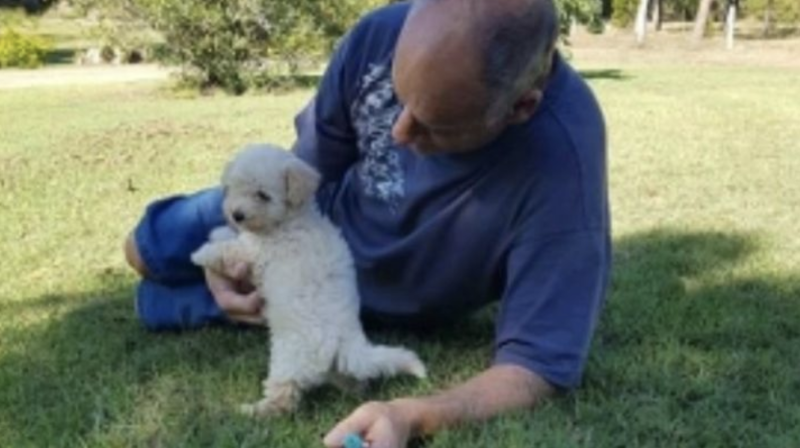 Gizmo and Mr Borg together when the pup was young. Source: GoFundMe/A New Dog to Provide Therapy For Ray