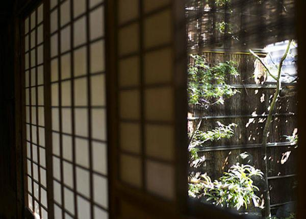 ▲View of the inner garden from the tea room. Light plays on the green leaves creating a peaceful ambience