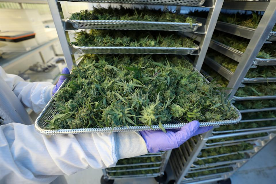 Hexo is continuing its appetite for acquiring rivals with a $50 million all-stock deal to buy 48North Cannabis.