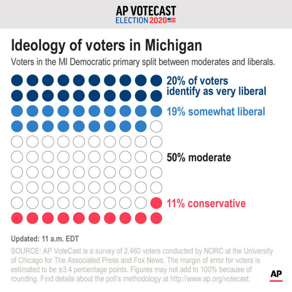 Voters in the M.I. Democratic primary split between moderates and liberals.;