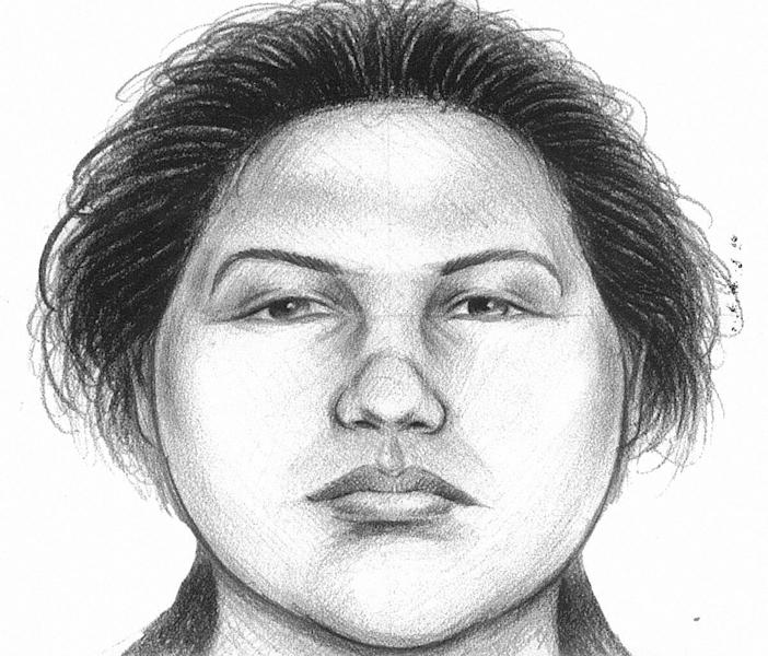 In this image provided by the New York City Police Department, a composite sketch showing the woman believed to have pushed a man to his death in front of a subway train on Thursday, Dec. 27, 2012 is shown. Police arrested Erika Menendez on Saturday, Dec. 29, 2012, after a passer-by on a street noticed she resembled the woman seen in a surveillance video. The attack was the second time this month that a man was pushed to his death in a city subway station. (AP Photo/New York City Police Department)