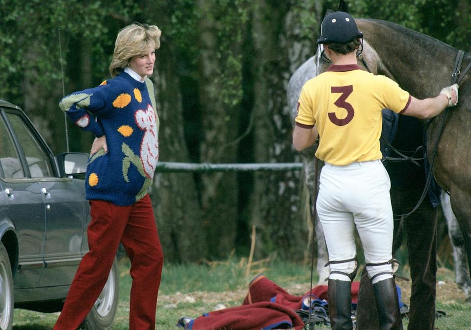 <p>Princess Diana cozied up in fun sweaters, like this jumper depicting a koala, while pregnant.</p>