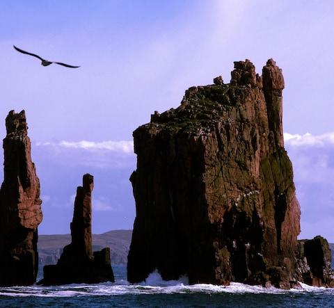 Sea stacks Shetlands - Credit: visitscotland
