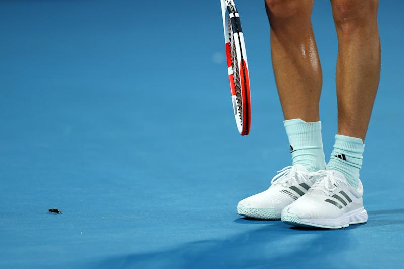MELBOURNE, AUSTRALIA - JANUARY 29: Dominic Thiem of Austria removes a bug off the court during his Men's Singles Quarterfinal match against Rafael Nadal of Spain on day ten of the 2020 Australian Open at Melbourne Park on January 29, 2020 in Melbourne, Australia. (Photo by Cameron Spencer/Getty Images)