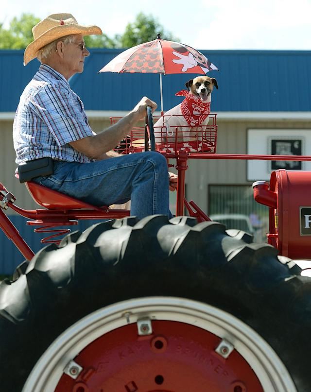 <p>Alan Dingfelder, of North East Township, and his dog Annie, ride in the Millcreek Township Fourth of July parade, near Erie, Pa., on Dingfelder's 1936 Farmall tractor, Tuesday, July 4, 2017. (Photo: Jack Hanrahan/Erie Times-News via AP) </p>
